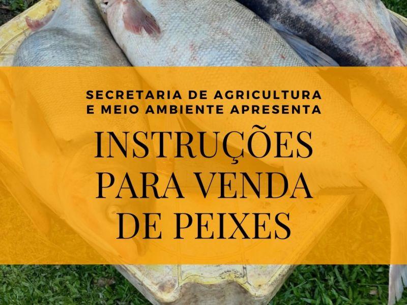 Foto de capa da notícia: Secretaria da Agricultura apresenta instruções para a venda de peixes nas propriedades rurais