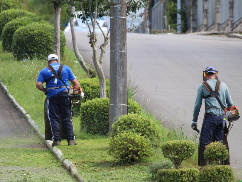 Foto de capa da notícia: Avenidas passam por serviços de roçada