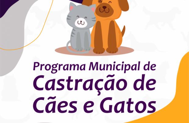 Foto de capa da notícia: Secretaria de Agricultura e Meio Ambiente abre inscrições para o programa de castração de cães e gatos