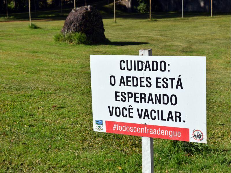 Foto de capa da notícia: Presença do mosquito Aedes aegypti em Nova Petrópolis diminui pela primeira vez em 2021