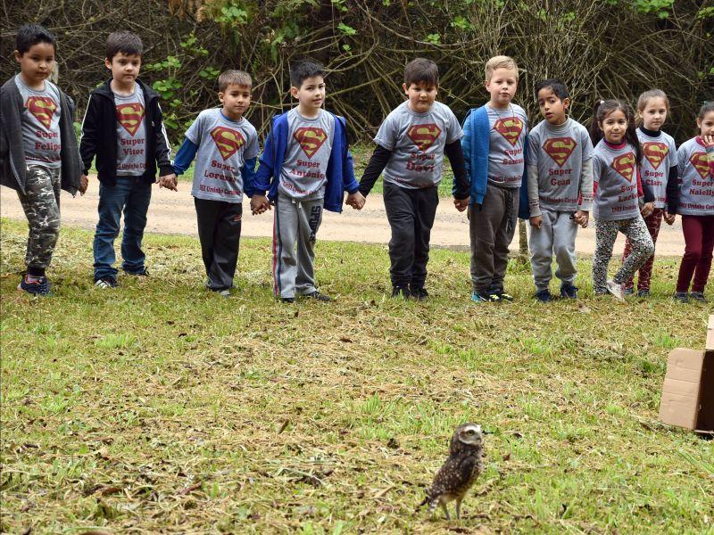 Foto de capa da notícia: Alunos da Escola Ursinho Carinhoso participam da soltura de animais silvestres