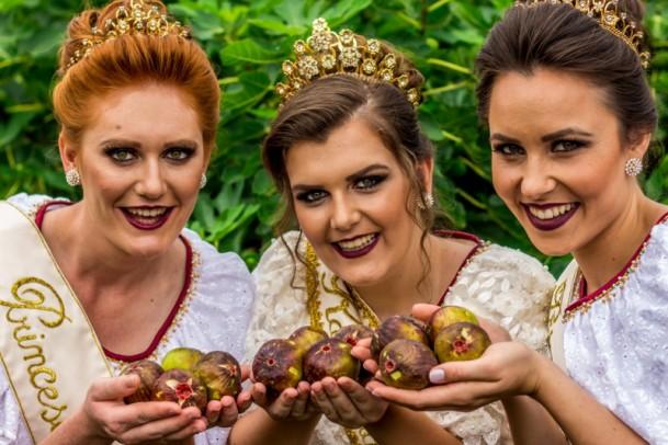 Foto de capa da notícia: Produção de figo é destaque em Nova Petrópolis