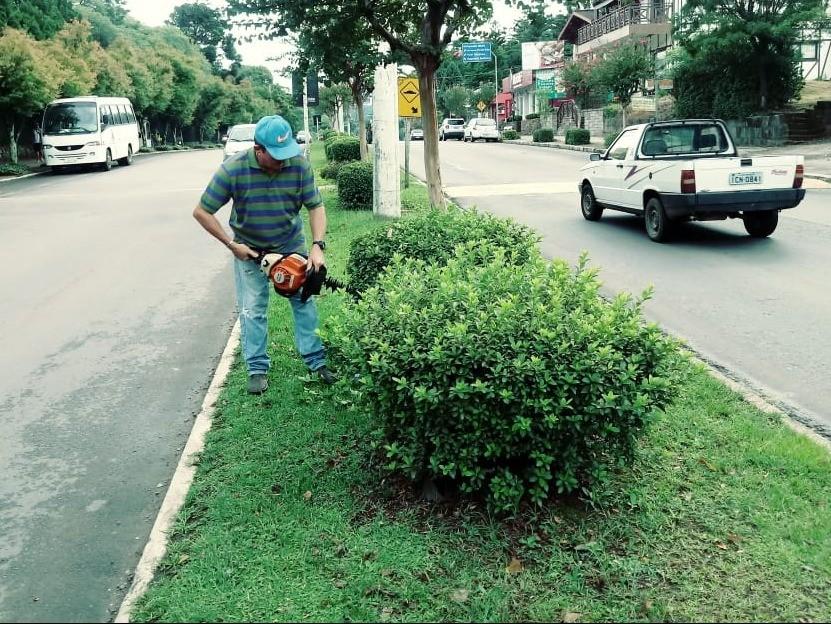 Foto de capa da notícia: Horto Municipal realiza última poda nas azaleias antes da floração