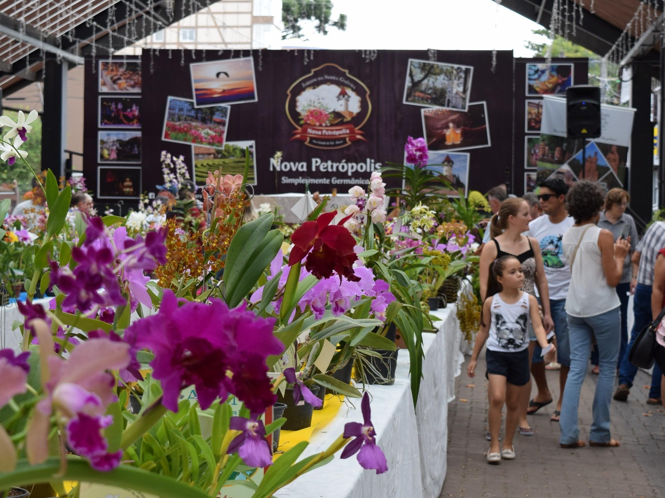 Foto de capa da notícia: Nova Petrópolis encerra Verão no Jardim da Serra Gaúcha com flores e literatura