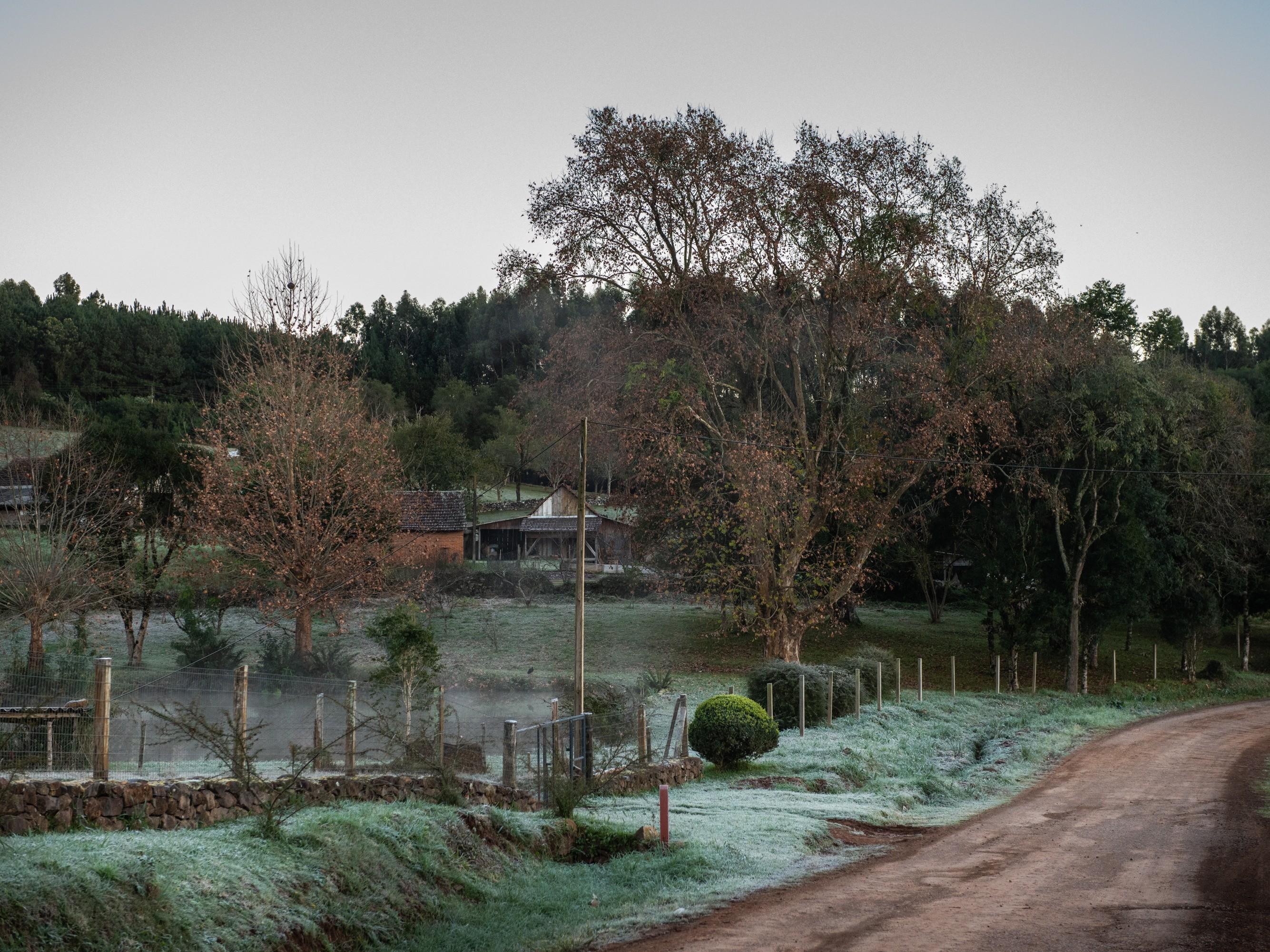 Foto de capa da notícia: Frio chega a Nova Petrópolis e possibilidade de neve anima munícipes  e turistas