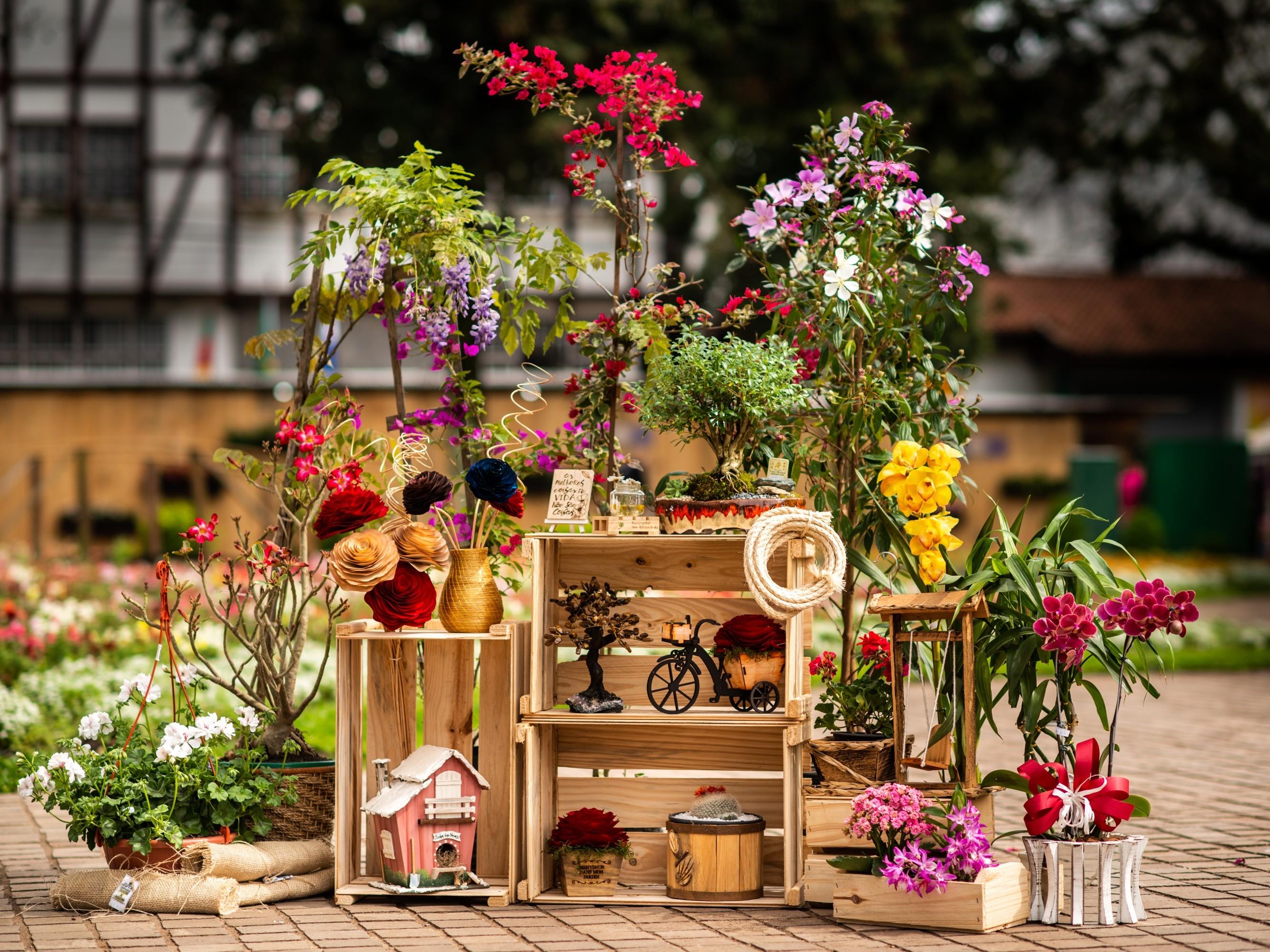Foto de capa da notícia: Nova Petrópolis enaltece paisagismo e flores no Festival da Primavera – Frühlingsfest