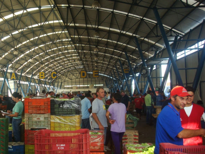 Foto de capa da notícia: CEASA Serra abre licitação de boxes e depósitos para comercialização de hortifrutigranjeiros