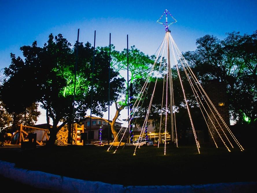 Foto de capa da notícia: Árvore de Natal ilumina a Praça Os Pioneiros