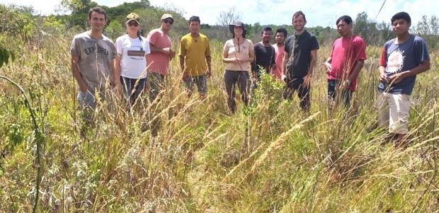 Foto de capa da notícia: Agricultura Biodinâmica na Aldeia Tavaí