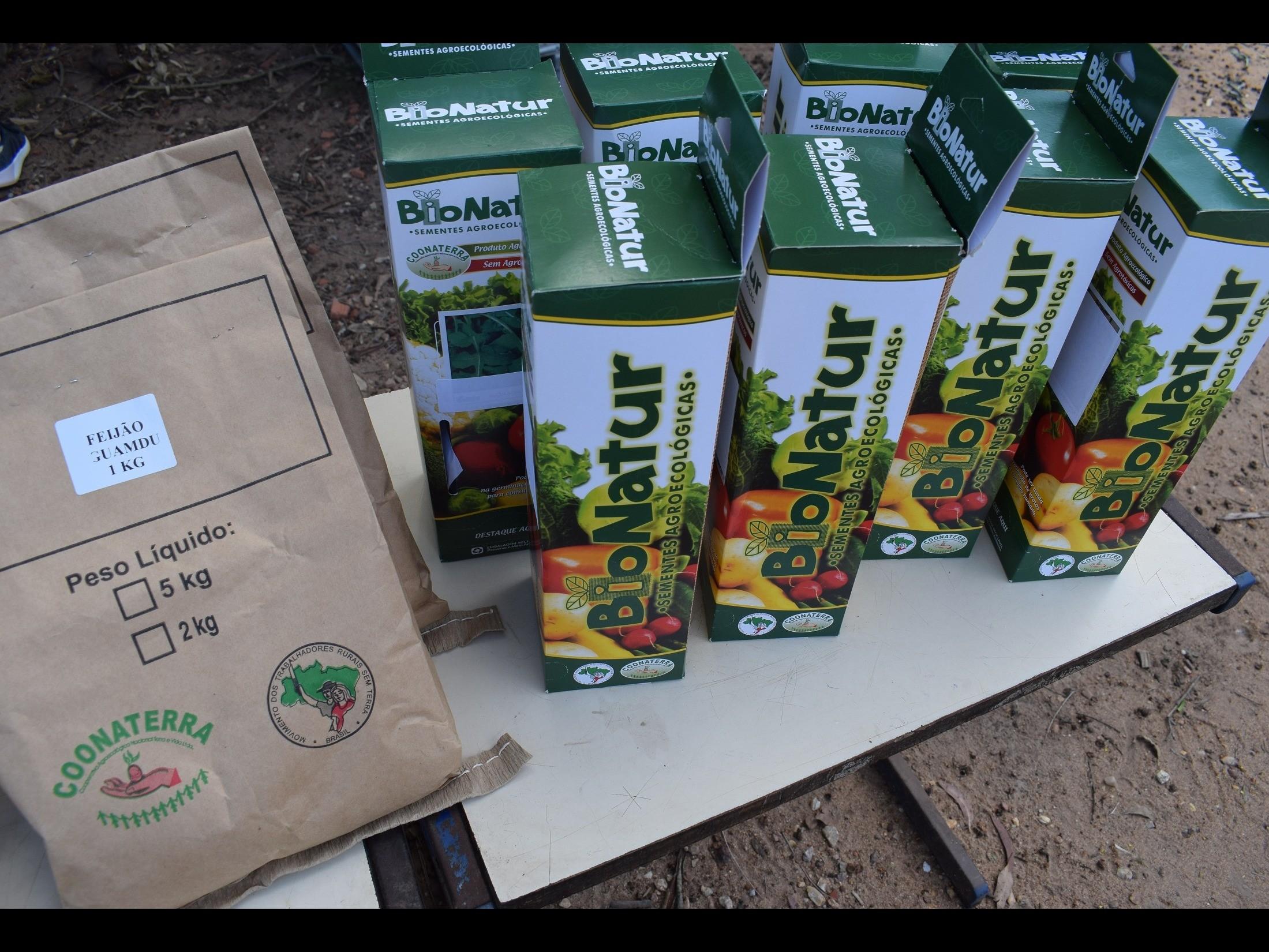 Foto de capa da notícia: Aldeia Tavaí recebe sementes