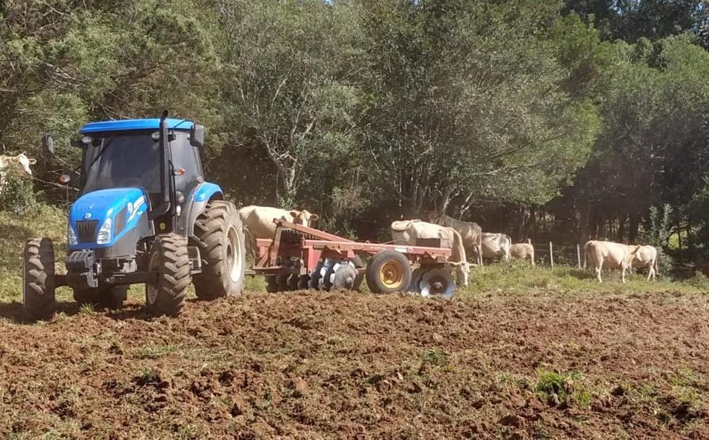 Foto de capa da notícia Secretaria de Agricultura e Meio Ambiente de Ipê está atuando no preparo de solo em propriedades rurais