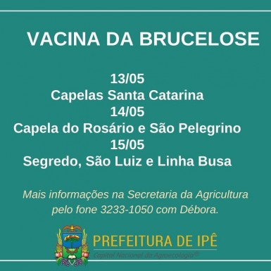 Foto de capa da notícia: Vacina da brucelose é retomada em Ipê