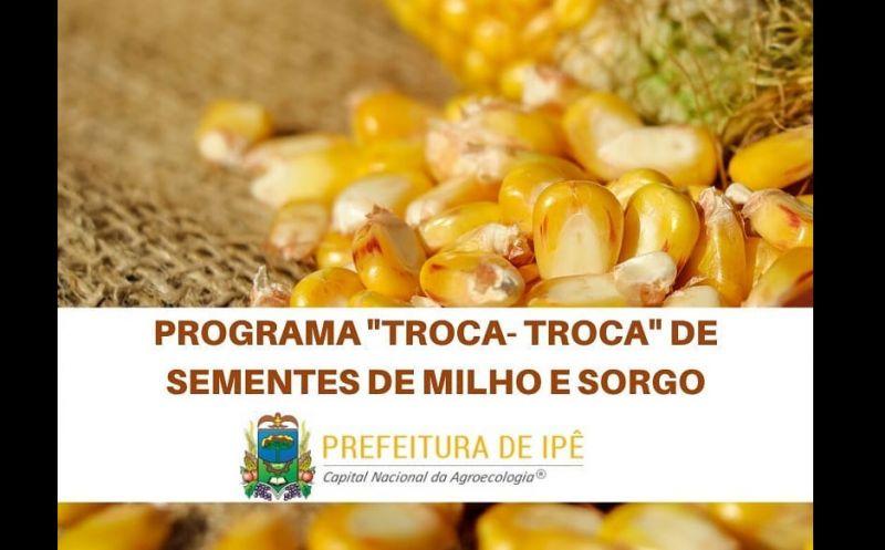Foto de capa da notícia Atenção para encomenda de sementes de milho e sorgo até o dia 05 de junho