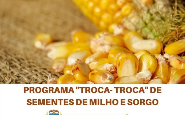 Foto de capa da notícia: Informe sobre procedimento para ressarcimento dos valores do programa troca-troca de sementes de milho e sorgo