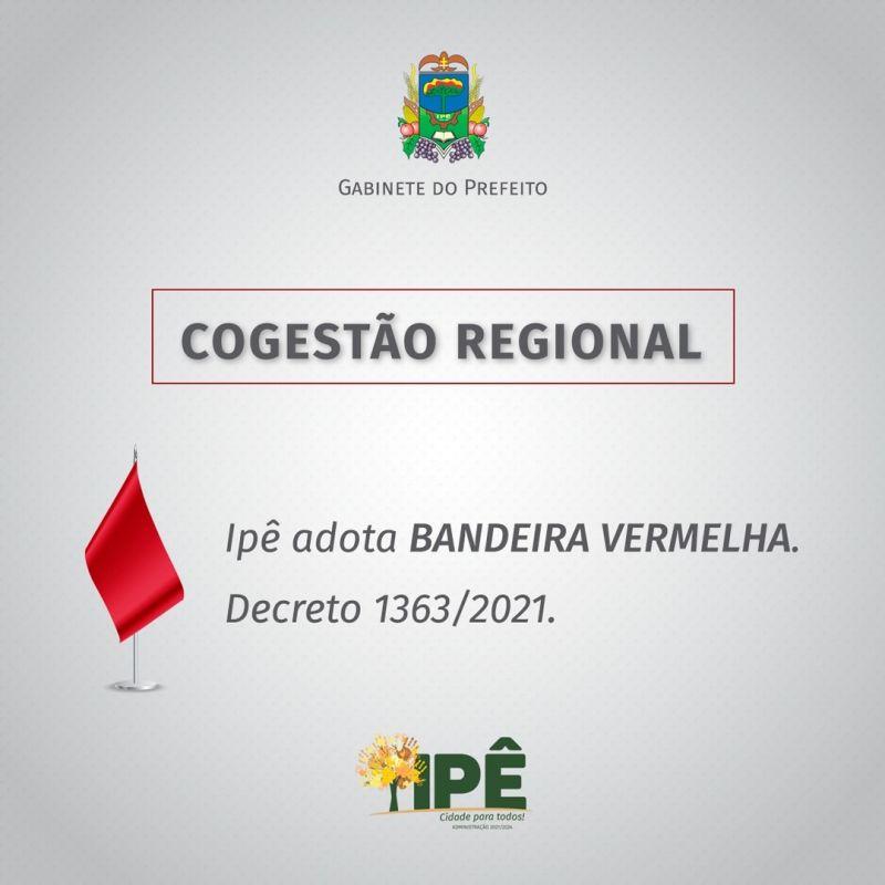 Foto de capa da notícia IPÊ ADERE A COGESTÃO REGIONAL