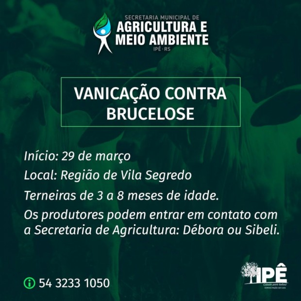 Foto de capa da notícia: VACINAÇÃO CONTRA BRUCELOSE INICIA SEGUNDA.