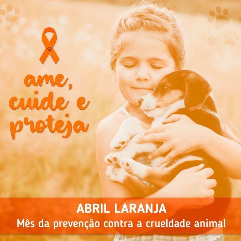 Foto de capa da notícia ABRIL LARANJA – MÊS DE PREVENÇÃO CONTRA A CRUELDADE ANIMAL