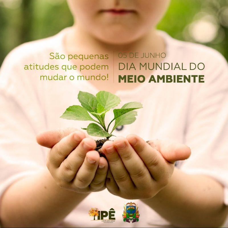Foto de capa da notícia DIA MUNDIAL DO MEIO AMBIENTE
