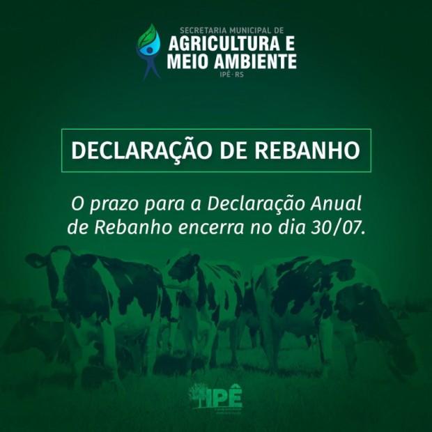 Foto de capa da notícia: ÚLTIMOS DIAS PARA REALIZAR A DECLARAÇÃO DE REBANHO